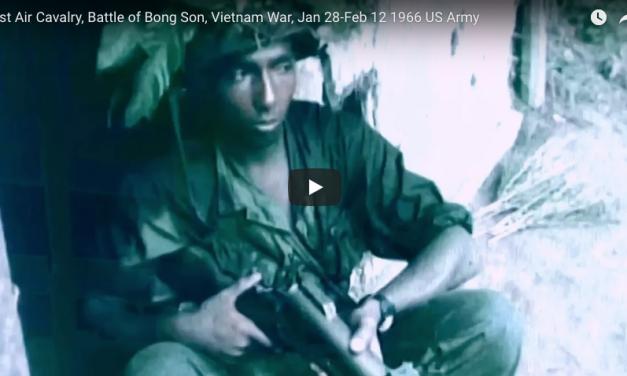 1st Air Cavalry, Battle of Bong Son